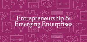 Entrepreneurship and Emerging Enterprises