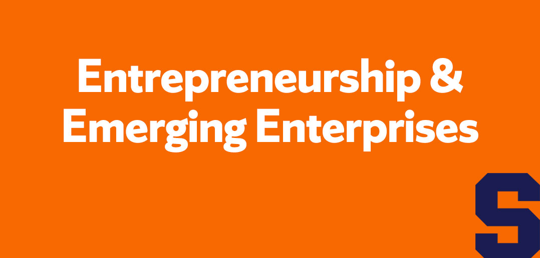 entrepreneurship & emerging enterprises